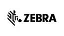 7_Zebra